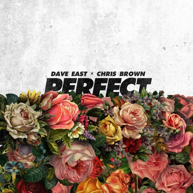 """Dave East and Chris Brown Cater to the Ladies on New Song""""Perfect"""""""